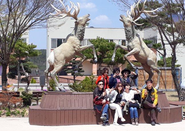 Deer Village