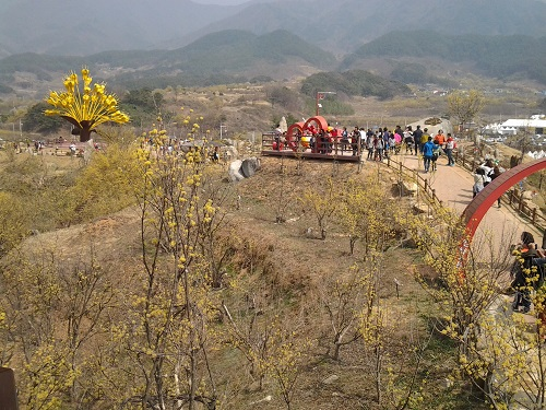 Sansuyu Festival