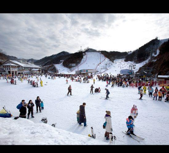 Elysian Ski 1200